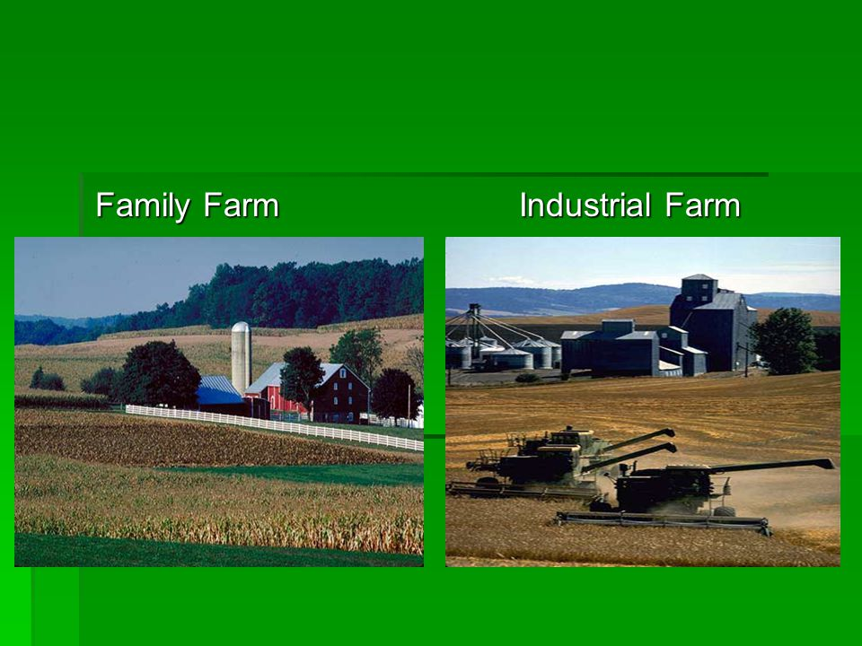 Family Farm Industrial Farm