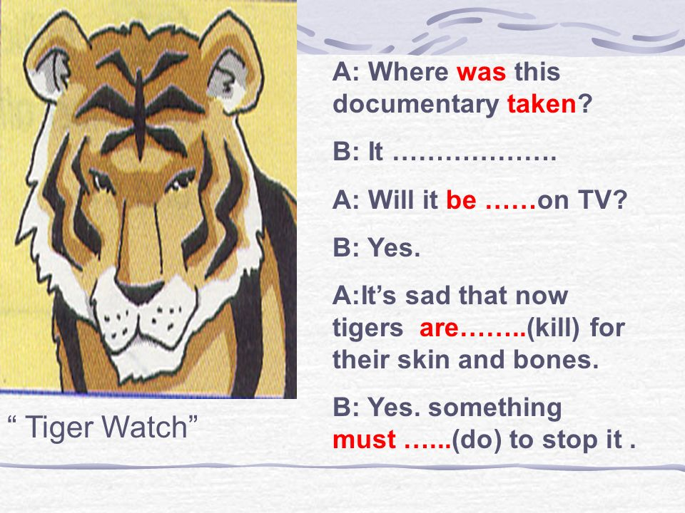 Tiger Watch A: Where was this documentary taken B: It ……………….