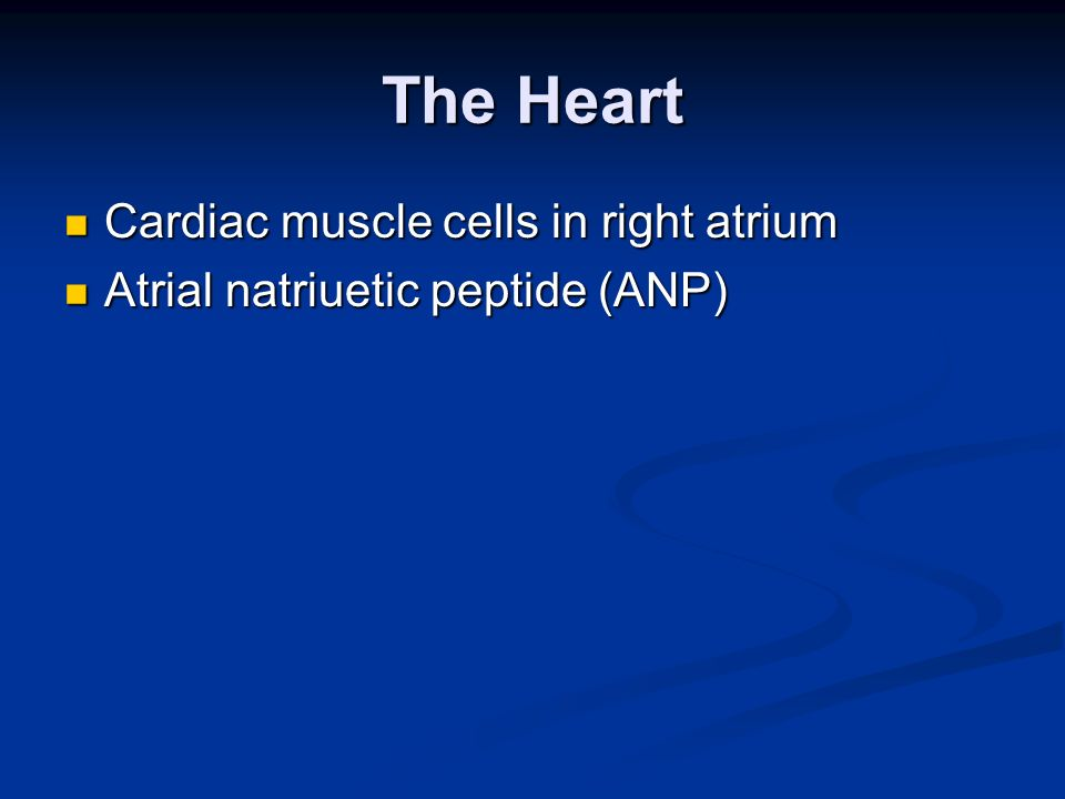 The Heart Cardiac muscle cells in right atrium