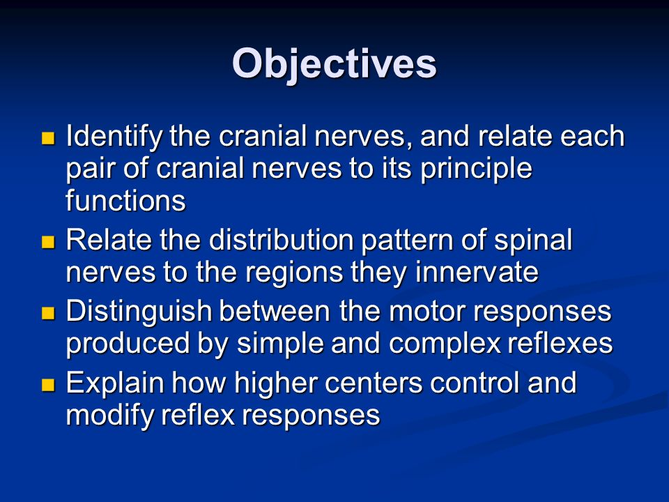 Objectives Identify the cranial nerves, and relate each pair of cranial nerves to its principle functions.