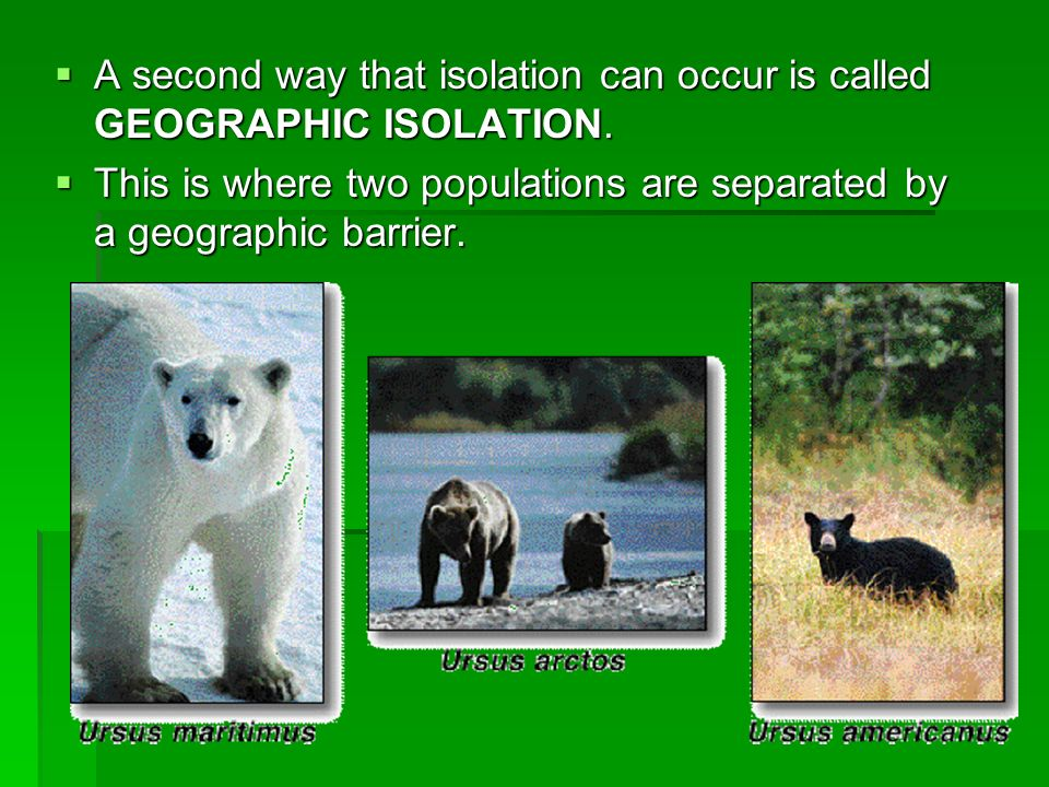 A second way that isolation can occur is called GEOGRAPHIC ISOLATION.