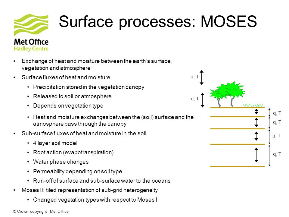 Surface processes: MOSES
