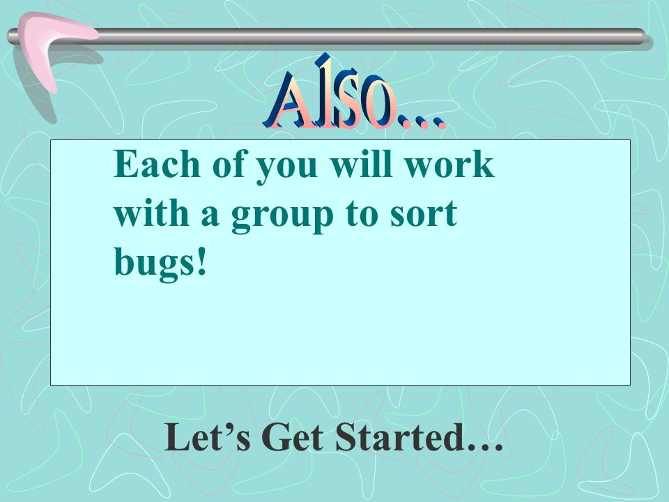 Each of you will work with a group to sort bugs!