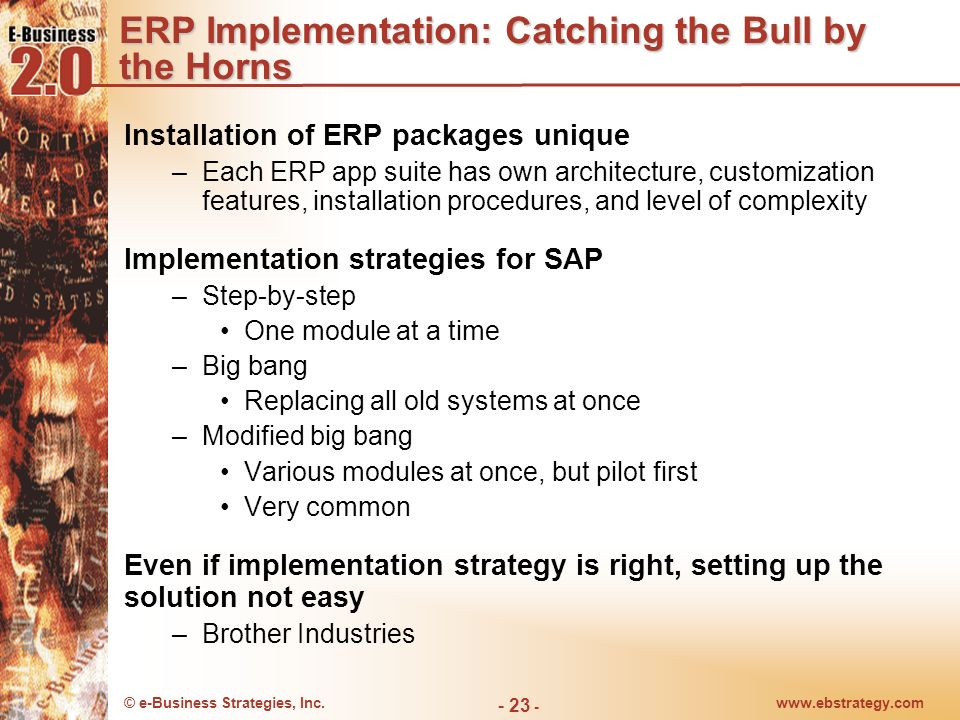 ERP Implementation: Catching the Bull by the Horns