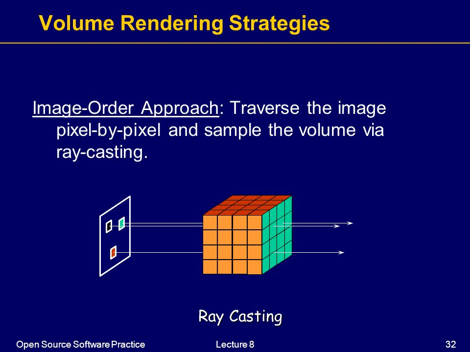 Volume Rendering Strategies