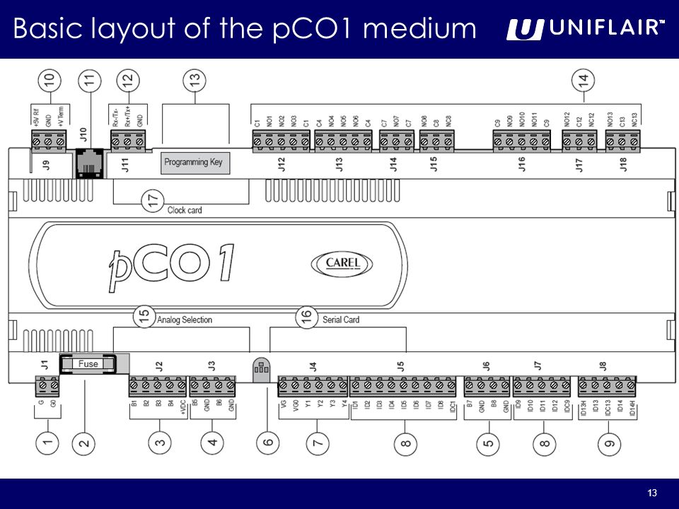 Basic layout of the pCO1 medium