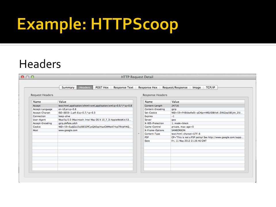 Example: HTTPScoop Headers