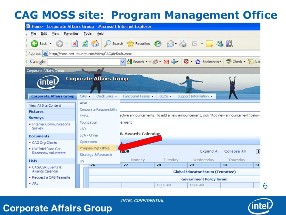 CAG MOSS site: Program Management Office