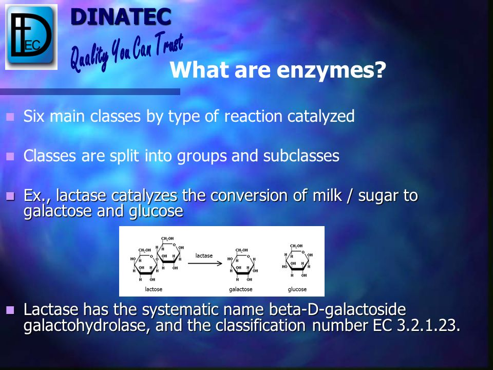 What are enzymes Six main classes by type of reaction catalyzed