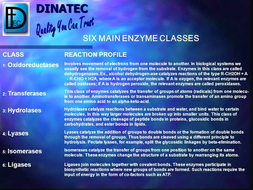 SIX MAIN ENZYME CLASSES