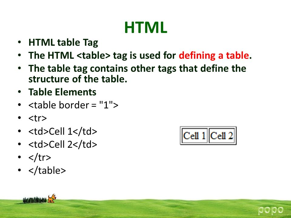 HTML popo HTML table Tag