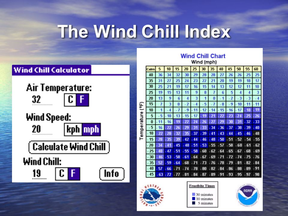 The Wind Chill Index The Wind Chill Index measures the relationship between air temperature and wind speed.