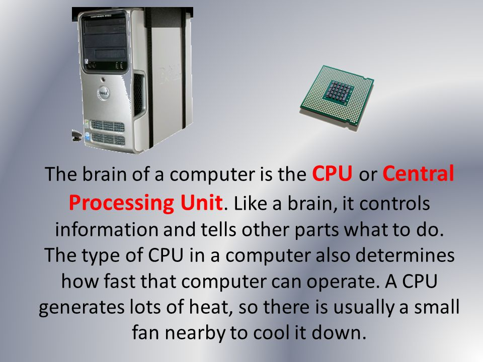 The brain of a computer is the CPU or Central Processing Unit