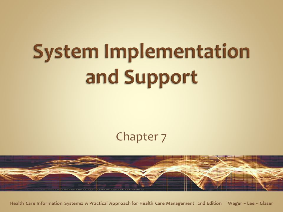 System Implementation and Support