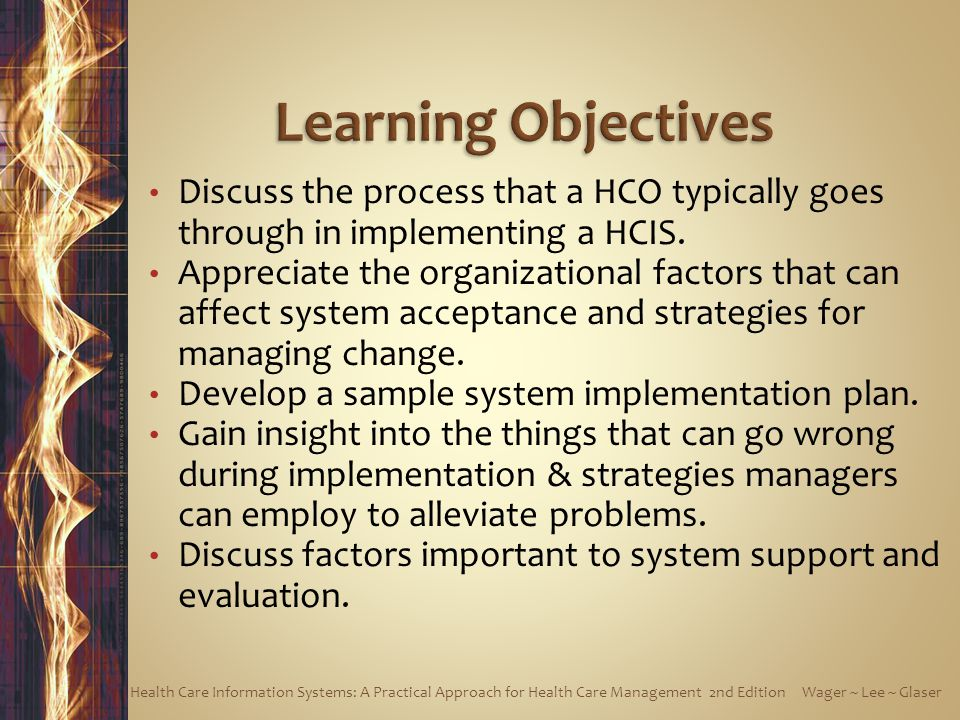Learning Objectives Discuss the process that a HCO typically goes through in implementing a HCIS.