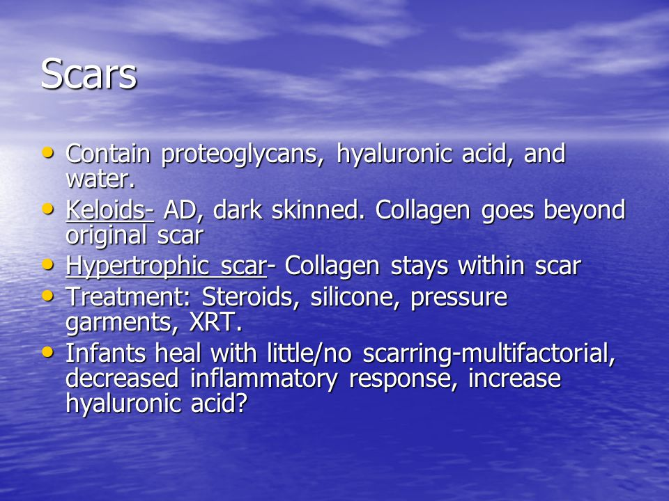 Scars Contain proteoglycans, hyaluronic acid, and water.