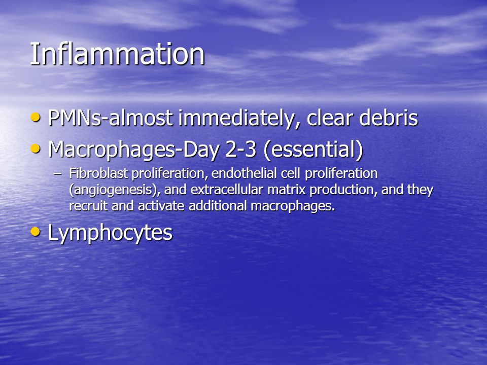 Inflammation PMNs-almost immediately, clear debris