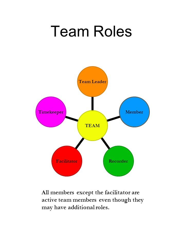 Team Roles All members except the facilitator are active team members even though they may have additional roles.