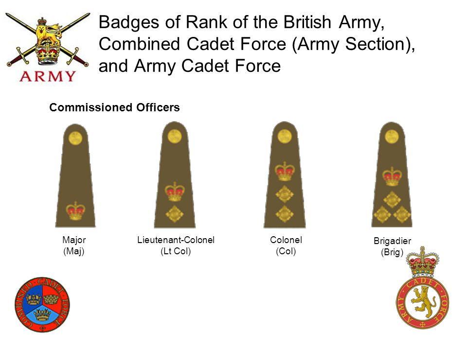 Badges of Rank of the Royal Navy, Combined Cadet Force