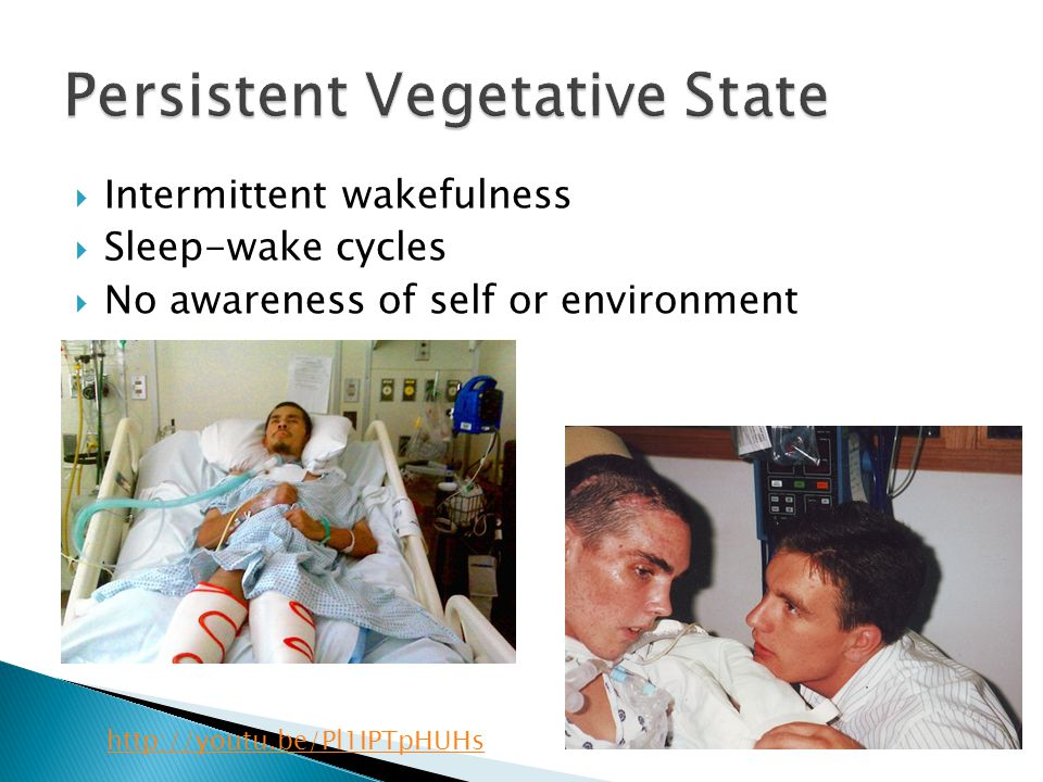 Persistent Vegetative State