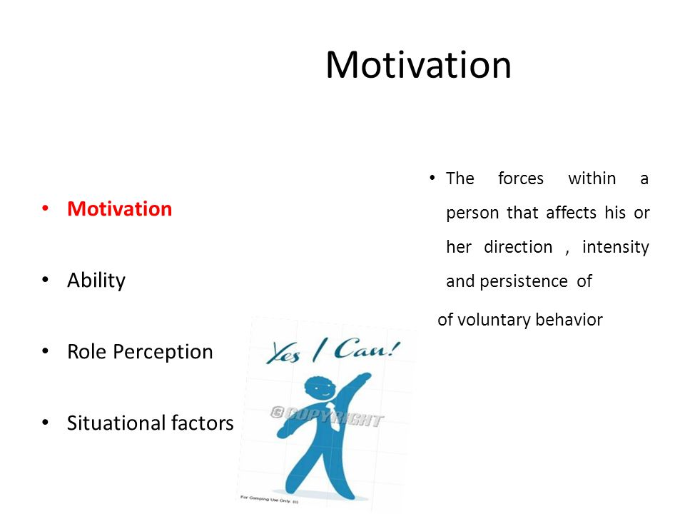 Motivation Motivation Ability Role Perception Situational factors