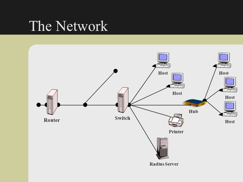 The Network Switch Router Host Host Host Host Hub Host Printer