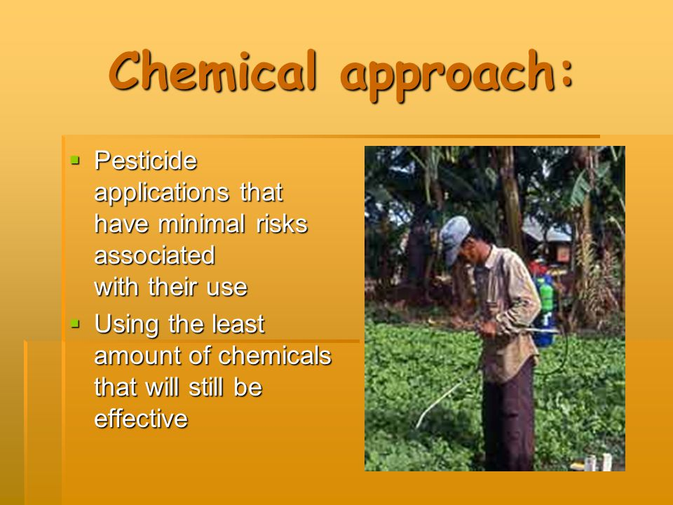 Chemical approach: Pesticide applications that have minimal risks associated with their use.