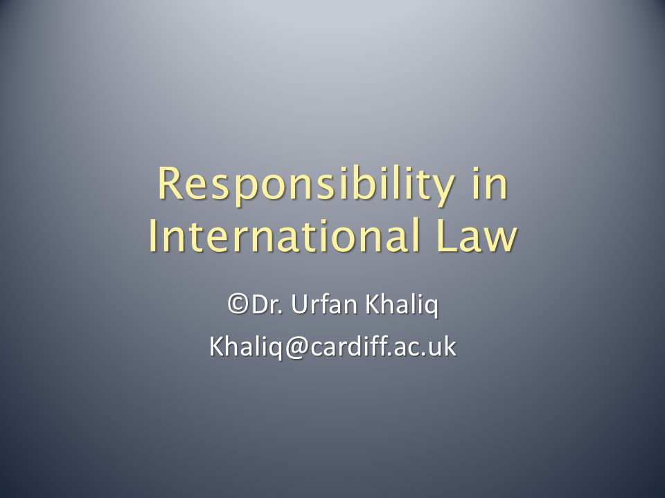 Responsibility in International Law