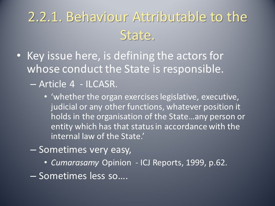 2.2.1. Behaviour Attributable to the State.