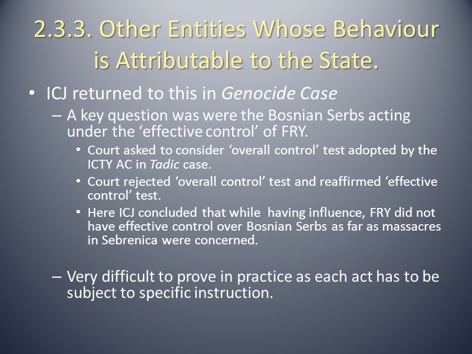 2.3.3. Other Entities Whose Behaviour is Attributable to the State.