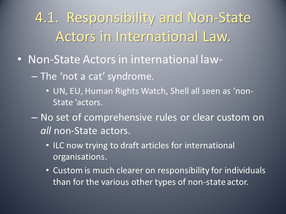 4.1. Responsibility and Non-State Actors in International Law.