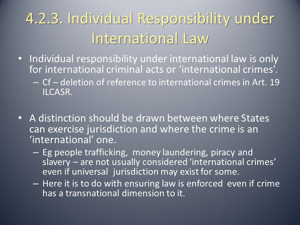 4.2.3. Individual Responsibility under International Law