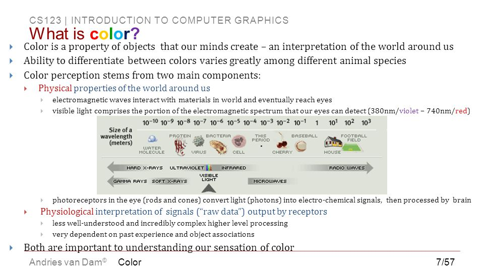 What is color Color is a property of objects that our minds create – an interpretation of the world around us.