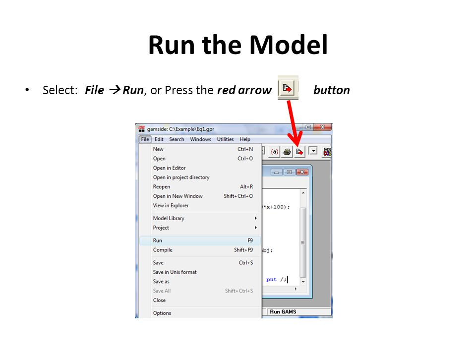 Run the Model Select: File  Run, or Press the red arrow button