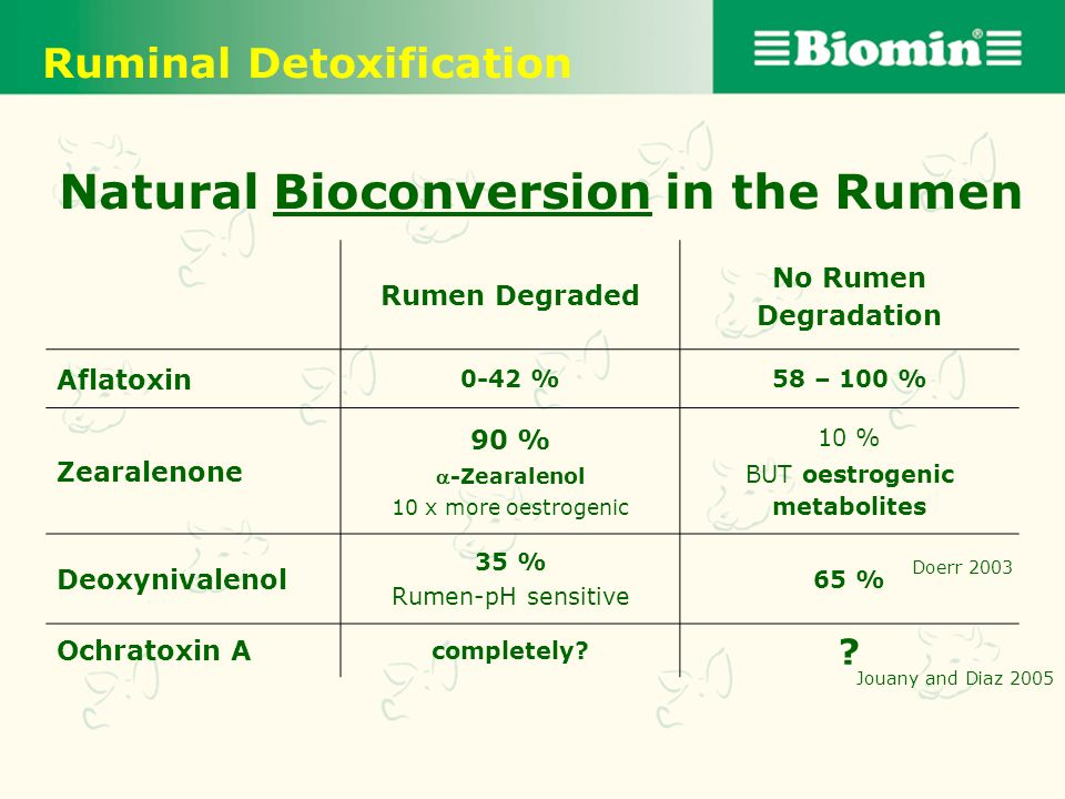 Natural Bioconversion in the Rumen