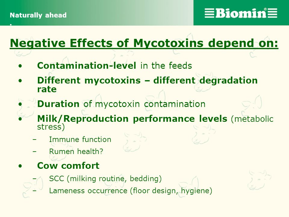 Negative Effects of Mycotoxins depend on: