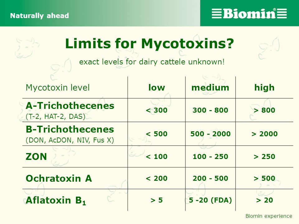 Limits for Mycotoxins exact levels for dairy cattele unknown!