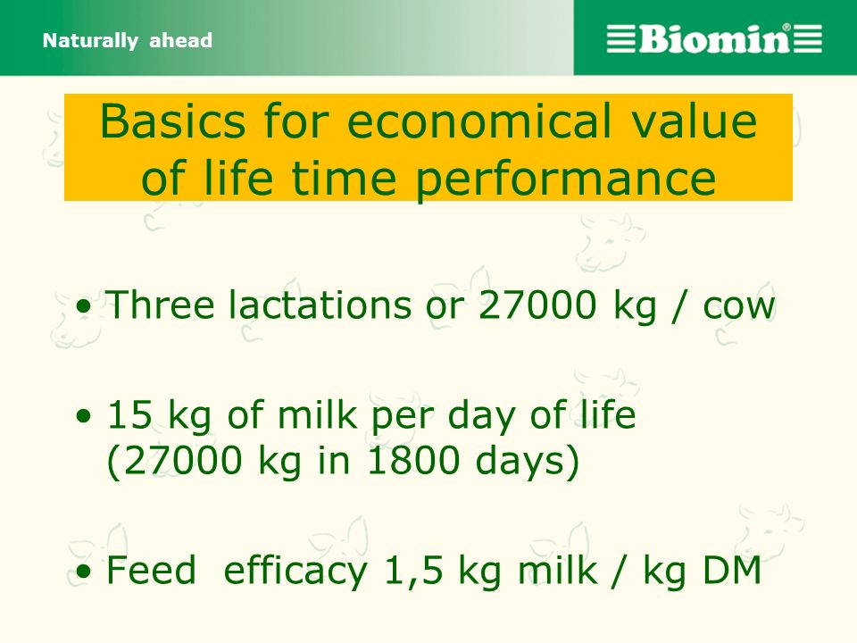 Basics for economical value of life time performance