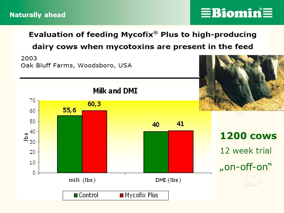 "Naturally ahead 1200 cows 12 week trial ""on-off-on"