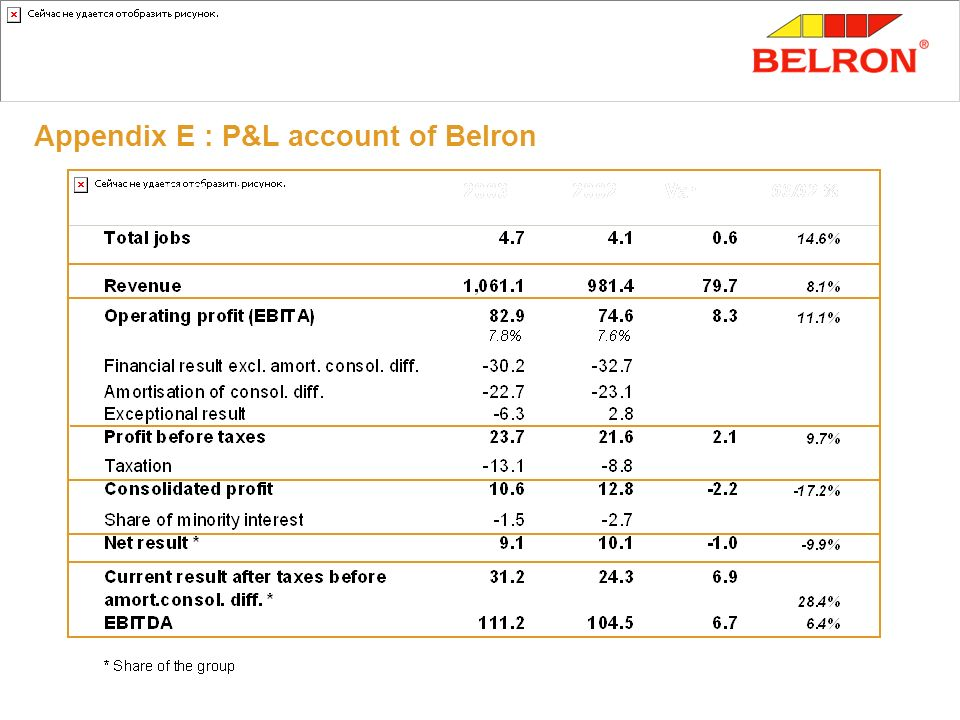 Appendix E : P&L account of Belron