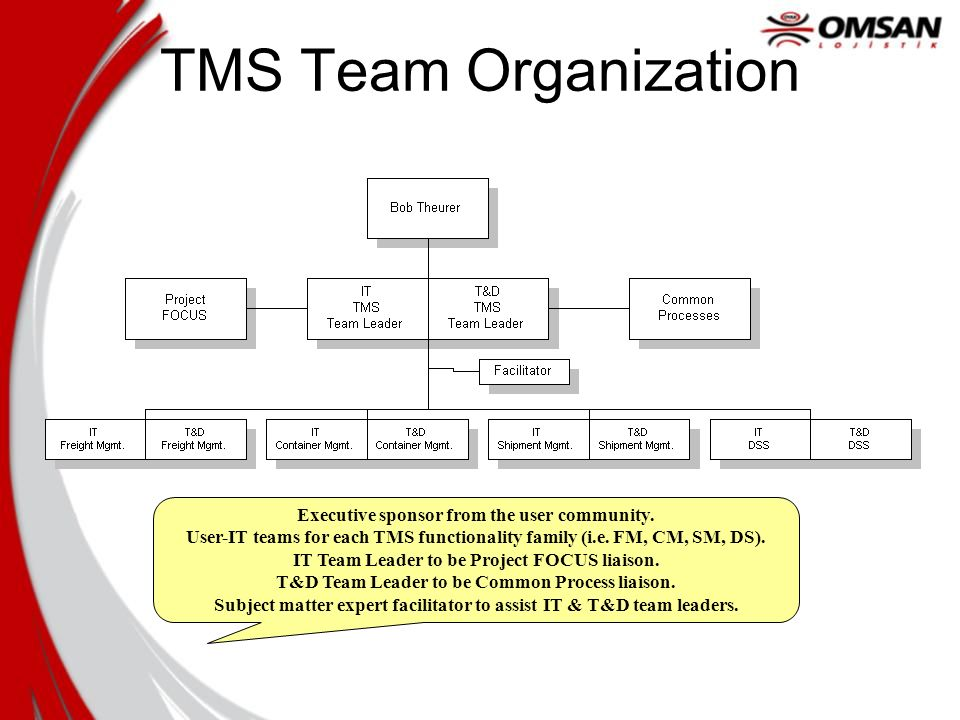 TMS Team Organization Executive sponsor from the user community.