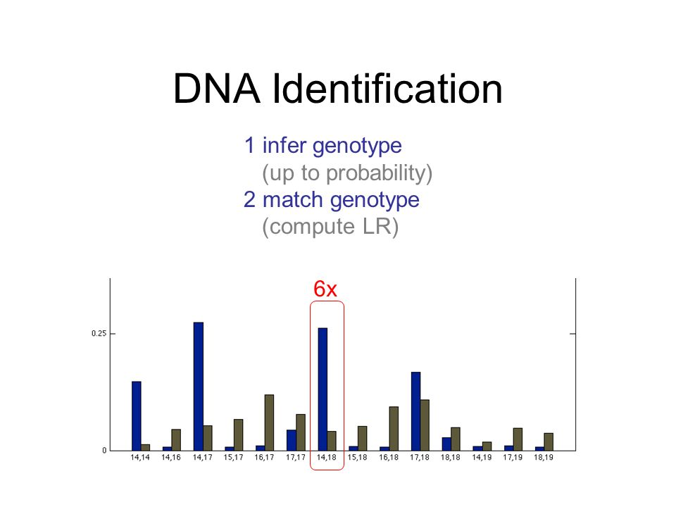 DNA Identification 1 infer genotype (up to probability)