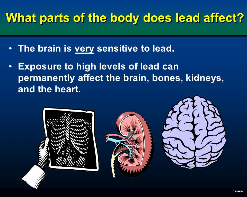 What parts of the body does lead affect