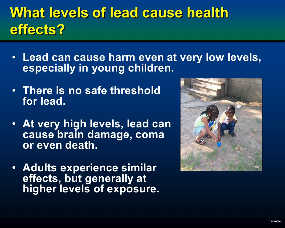 What levels of lead cause health effects