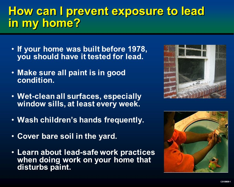 How can I prevent exposure to lead in my home