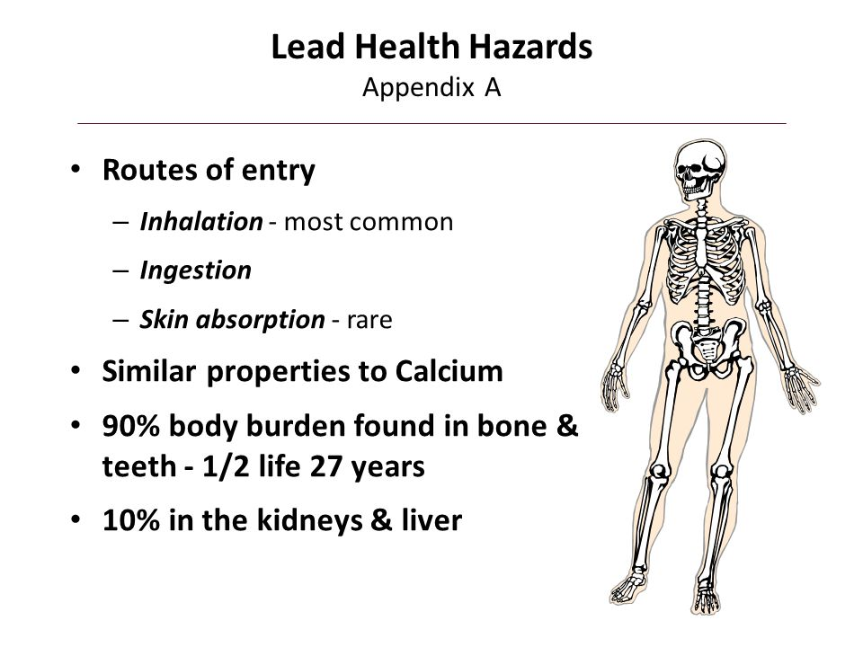 Lead Health Hazards Appendix A