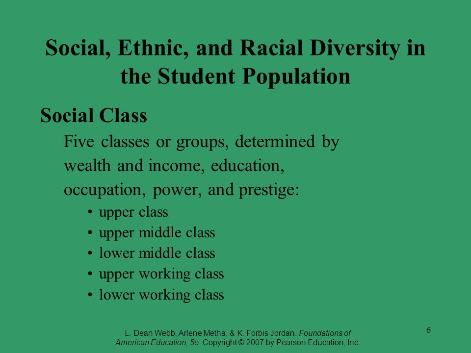 Social, Ethnic, and Racial Diversity in the Student Population