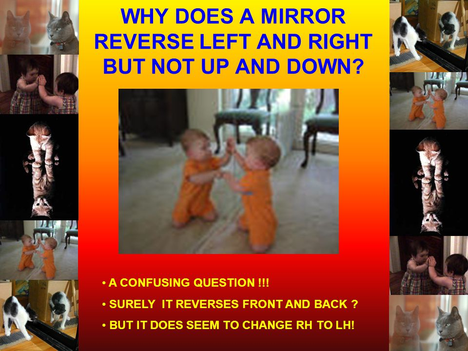 WHY DOES A MIRROR REVERSE LEFT AND RIGHT BUT NOT UP AND DOWN