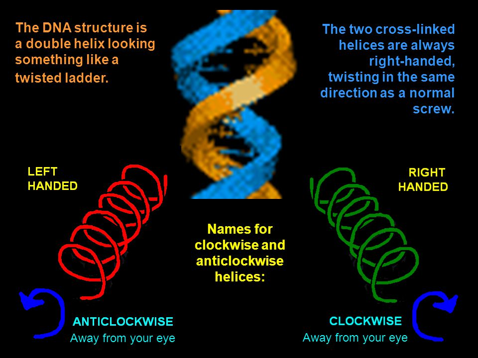 Names for clockwise and anticlockwise helices: