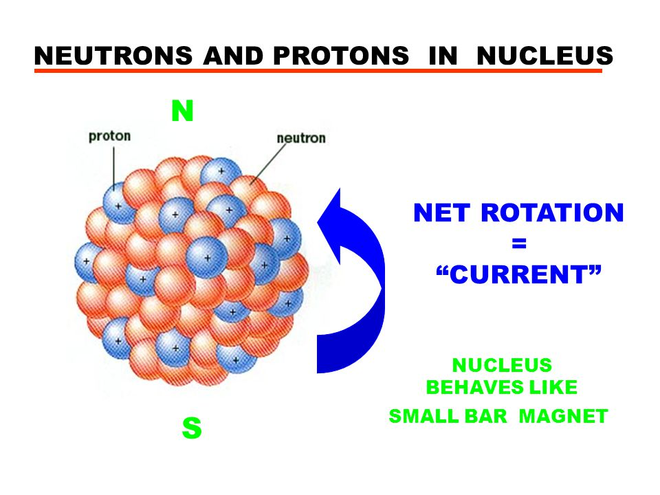 NEUTRONS AND PROTONS IN NUCLEUS